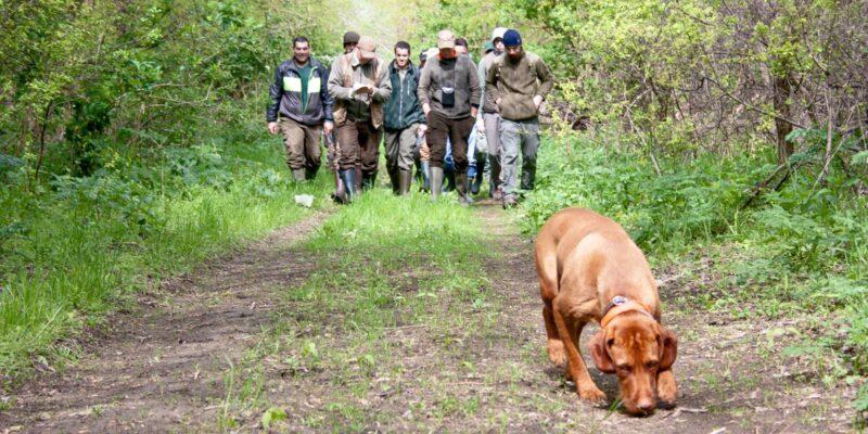 vadászvizsga